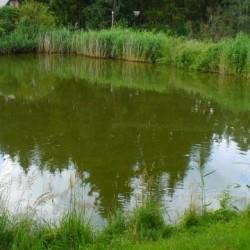 Revize zátopových čar v oblasti rybníka Paleček