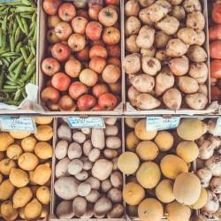 Hornopočerničtí zahrádkáři Vás zvou na tradiční výstavu ovoce, zeleniny, květin…