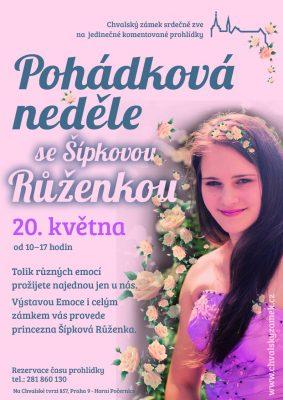 Plakat Ruzenka