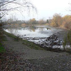 Biologický rybník ztrácí vodu