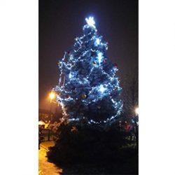 Vánoční strom na Chvalech už svítí!