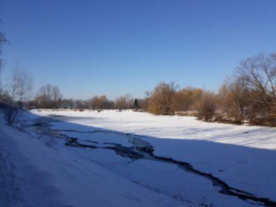 Vypuštěný Biologický rybník I