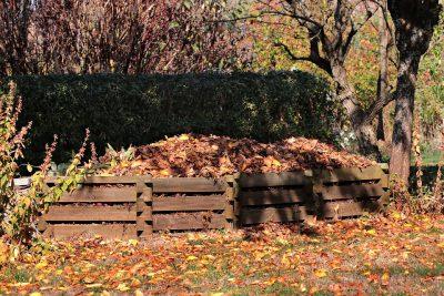 autumn-3755125_960_720